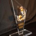 trophée flamme plexiglas