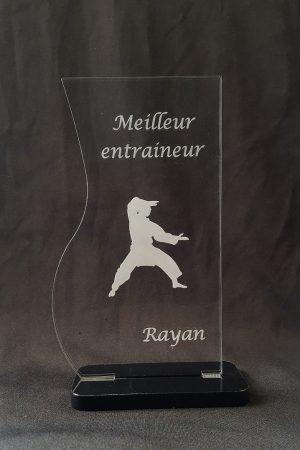 trophée art martiaux